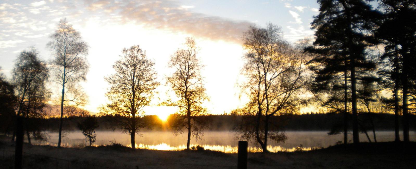 Bilder aus Schweden 5