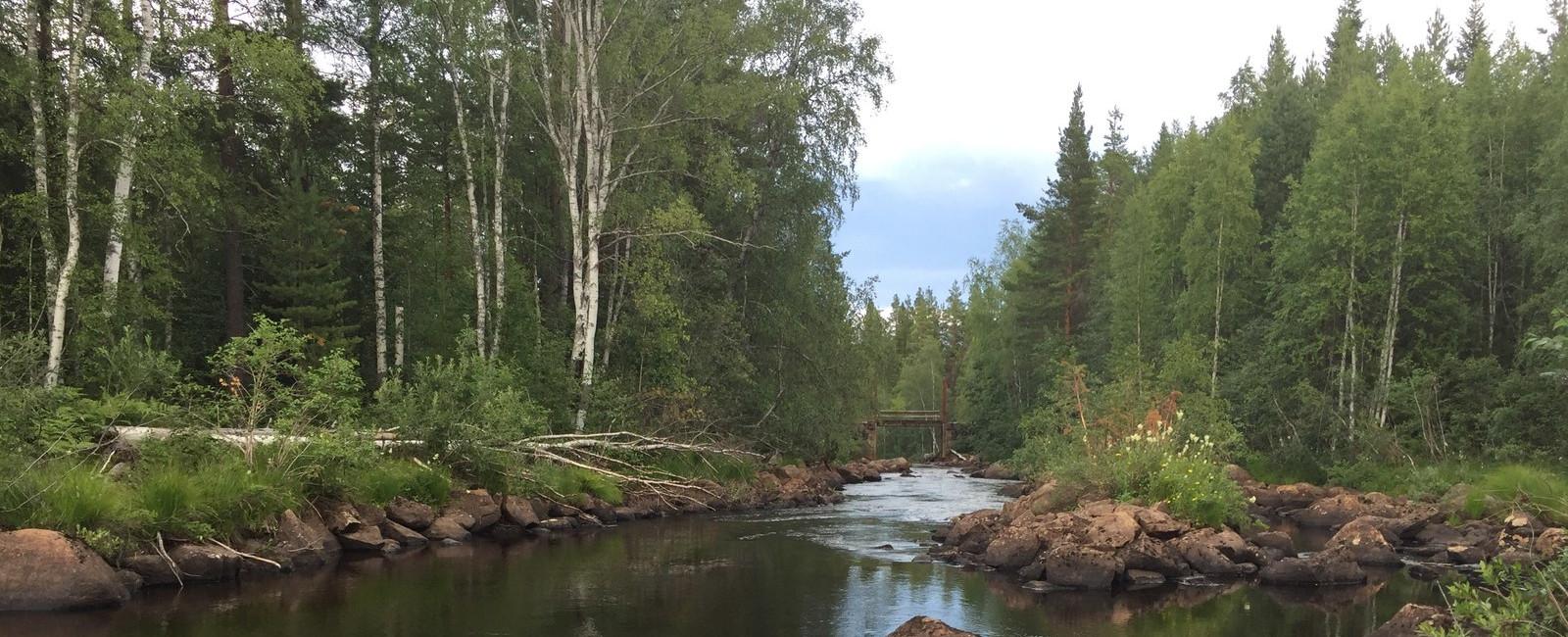 Bilder aus Schweden 3